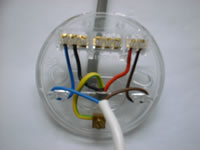 Awesome Ceiling Rose Wiring Diagram Basic Electronics Wiring Diagram Wiring Database Gramgelartorg